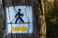 Nordic Walking Track Sign Pain...