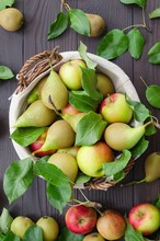 Basket With Apples And Pears O...