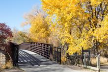 Footbridge Over The Animas River In The Autumn