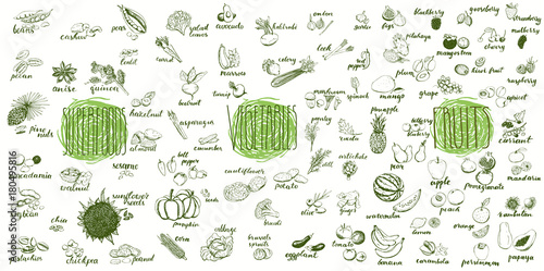Poster Cuisine Fruits, vegetables and superfoods collection. Hand drawn set of healthy and organic food. Multiset of vegetable and fruits sketches for menu design.