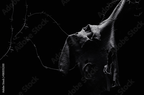 Fotografia, Obraz Ripped and torn child shirt on barbed wire on black background, symbol of innocent war victims