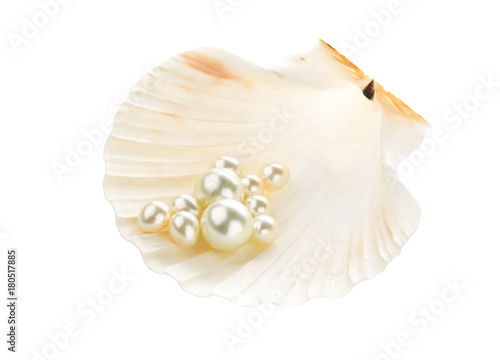 Multiple pearls in sea shell
