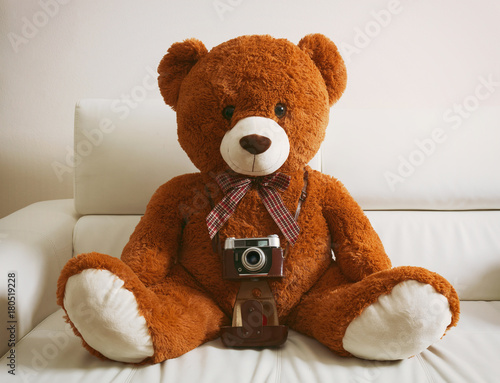 Teddy bear with vintage 35mm camera