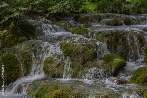 Foto auf Gartenposter Forest river moss, water, cascade, waterfall, river, nature, green, woods, green, natural, spring, environment, clean water, spring water, plitvice, shady stream, stream