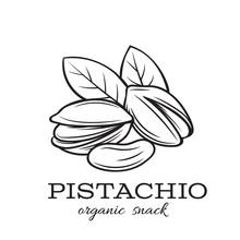 Hand Drawn Pistachio Nuts