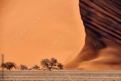 pustynna-wydma-namib