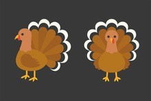 Turkey In  Front And Side View, Flat Design Illustration