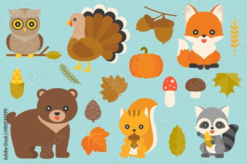 Wall Murals Cats wild animal and elements such as owl, turkey, fox, acorn, pumpkin, maple leaves, pine cone, mushroom, bear, squirrel, corn, raccoon, wheat for thanksgiving day and fall season, flat design vector