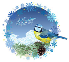 Christmas Card. Titmouse Sitti...
