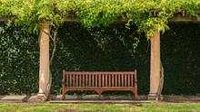 Wooden Vintage Bench In Garden