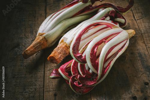 Treviso red radish