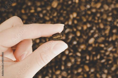 Fotografía  closeup single coffee bean