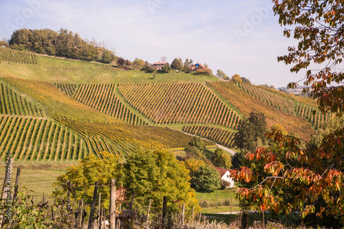 Fotografía  Weinbau in Slowenien