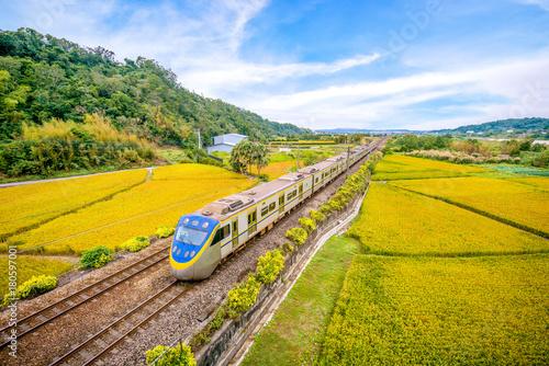 Spoed Fotobehang Meloen train on the field in miaoli, taiwan
