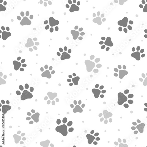 plakat Paw Seamless Pattern Vector