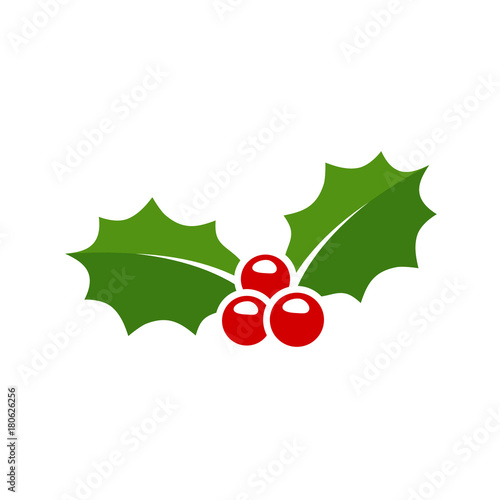 Holly berry leaves Christmas icon. Vector illustration Fototapete