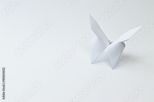 Fototapeta  origami butterfly close up on white background
