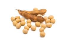 Dry Soy Beans Isolated
