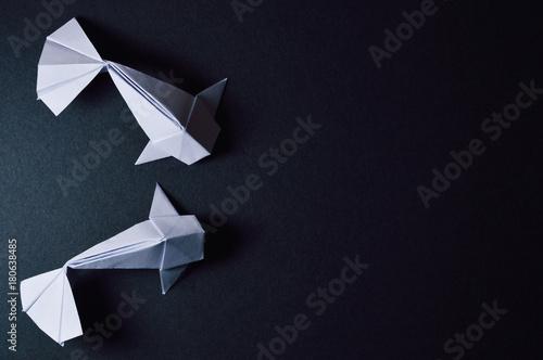 Fotografie, Obraz  origami koi fishes on dark background