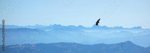 Fond de hotte en verre imprimé Aigle Eagle mountain
