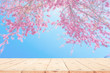 wood table top on blurred background of pink cherry blossom flower. the background for product display template