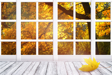 Panel Szklany Optyczne powiększenie Room interior with window frame and yellow maple leaf lying on wooden table in Shabby Chic style. Autumn sunny day with autumnal trees outside.