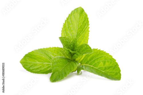 Deurstickers Textures green mint isolated on white background