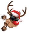 Rudolph Sonnenbrille Seite Lächeln Weihnachten