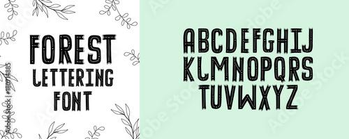 Modern Fancy Forest Alphabet Handwritten Font Letters Hand Lettering For Your Design