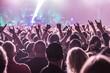 Fans beim Konzert