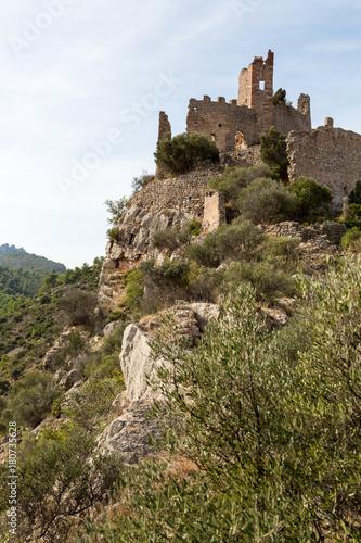 Foto op Aluminium Rudnes Ruin av en borg på en bergstopp i nationalpark