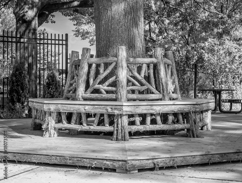 Outdoor Rotunda Bench Seating Area Wooden Built Wred Around Tree Trunk Park Wrap Abstract Architectural