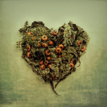 Autumn Leaves And Berries Arranged In Heart Shaped On Wall