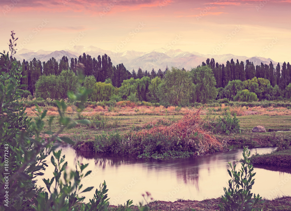 View of Andes mountains from green valley