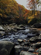 Ohiopyle State Park In Pennsyl...
