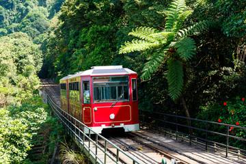 Vrhunac tramvaja u Hong Kongu