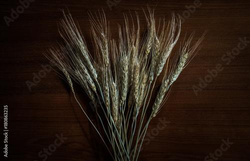 Foto op Canvas Paardebloemen en water pearls barley grain seed on background