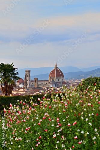 Fotografía  panorama della cattedrale di Santa Maria del Fiore a Firenze vista da piazzale M