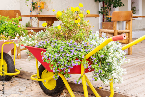 Canvas Print wheelbarrows with flowers in the city