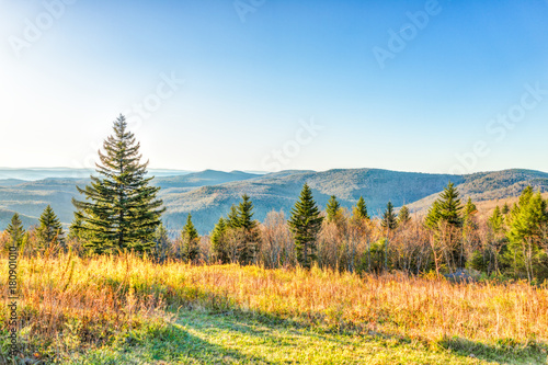 Fotografie, Obraz  Overlook of West Virginia mountains in autumn fall with foliage and one pine tre