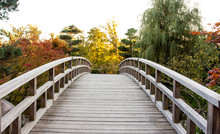 A Wood Curved Bridge Leading T...