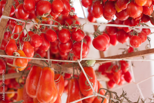 Fotografia  Red cherry tomatoes, from biological agriculture, hang to dry and be ready for pizza