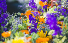 Bright Bouquets Of Flowers At ...