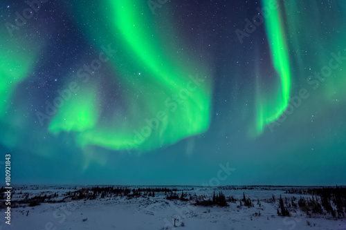 Photo  Northern Lights Above the Tundra