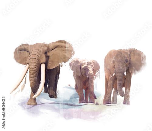 obraz-rodziny-elephant
