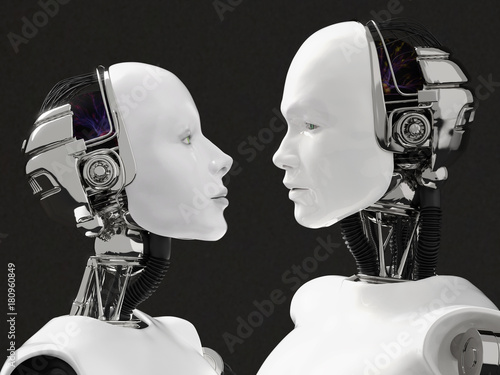 3D rendering of the heads of a female and male robot. Wallpaper Mural
