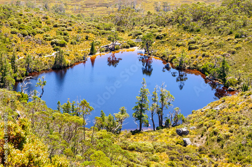 Fotografie, Obraz Wombat Pool in the Cradle Mountain-Lake St Clair National Park - Tasmania, Austr