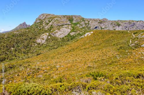 Fotografia, Obraz  Wombat Peak in the Cradle Mountain-Lake St Clair National Park - Tasmania, Austr