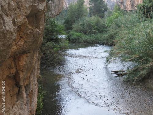 Fototapeten Forest river Mfstockc