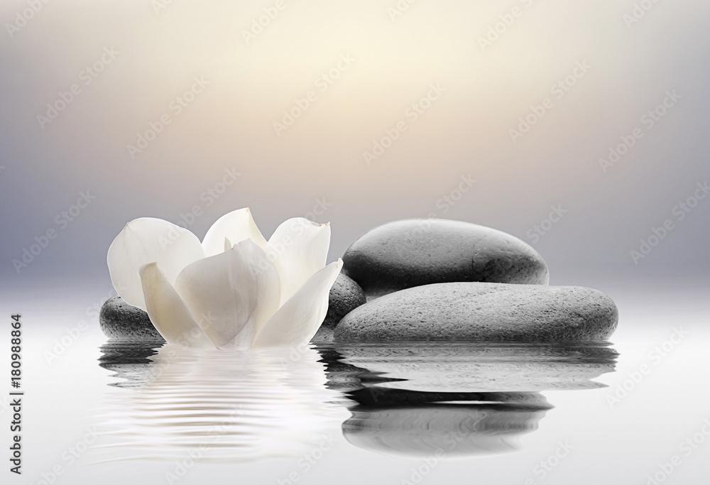 Fototapeta spa con flores agua y piedras